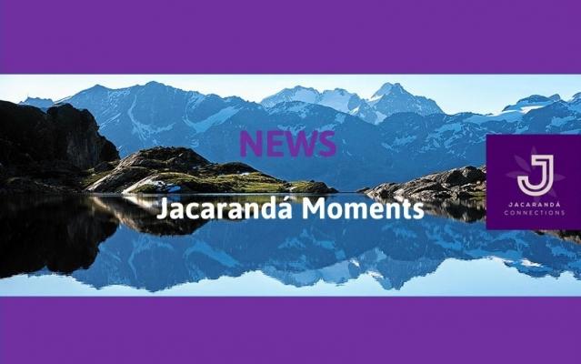 Newsletter October - Jacarandá Moments